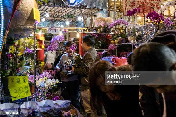 Shoppers look at violet flowers displayed for sale at the Lunar New Year fair at Victoria Park in Hong Kong China on Wednesday Feb 14 2018 The city's...