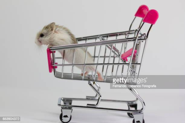 Shopping cart with a small mouse (hamster)