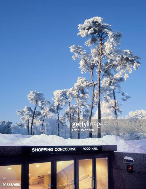 Shopping concourse and food hall in the middle of wintry forest