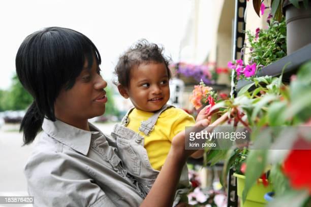 Compras para las Flores