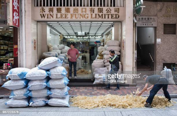 Shops selling dried seafood in Sheung Wan, Hong Kong. Dry food is a common ingredient in Chinese cooking and traditional medicine.