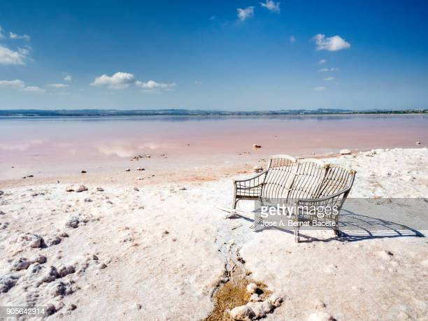 Shore of a lake of salty water with the water of pink color, with an ancient armchair of wood in his shore, in salt mines of Torrevieja, (Valencian Community), Spain.