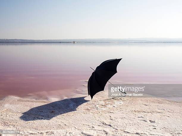 Shore of a salt lake in full sunlight, with a black umbrella on the shore