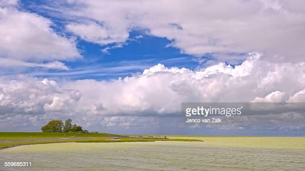 Shore of lake IJsselmeer