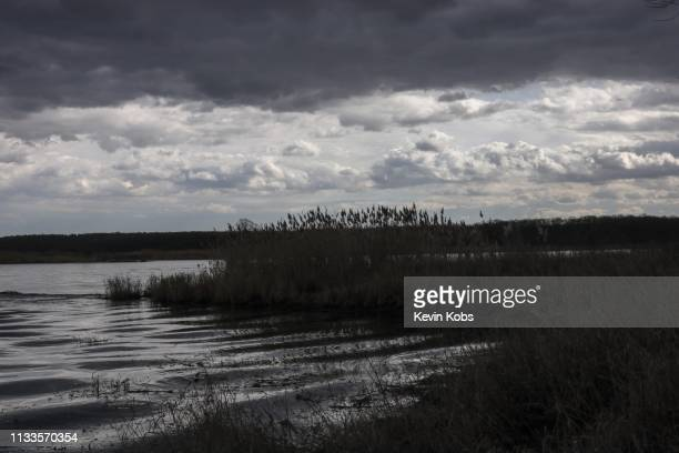 shore on the island ziegenwerder with dramatic clouds. - wolke stock pictures, royalty-free photos & images