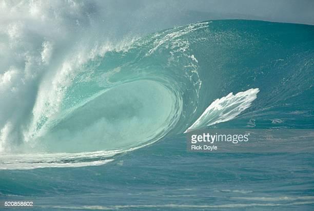 shorebreak waves in waimea bay - waimea bay - fotografias e filmes do acervo