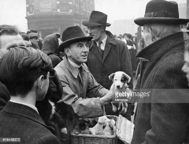Shoreditch open air livestock market 12th December 1944 The pavement market for mice birds rabbits dogs etc around the Bethnal Green Road Shoreditch...