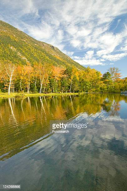 shoreline at state park - lake solitude (new hampshire) stock photos and pictures