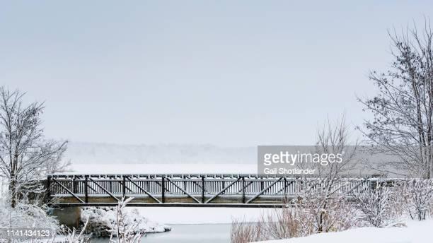 shoreline bridge - barrie stock pictures, royalty-free photos & images