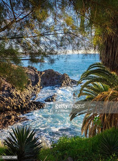 Shoreline in Costa Adeje