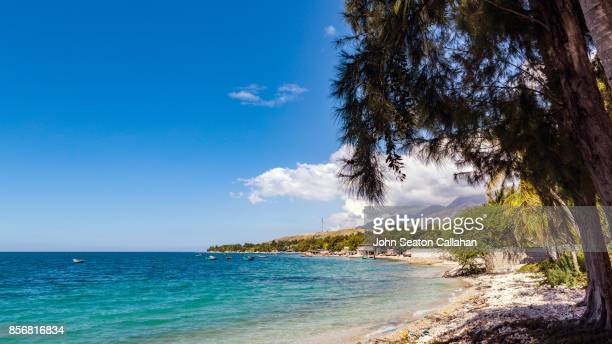 Shoreline of the Caribbean Sea