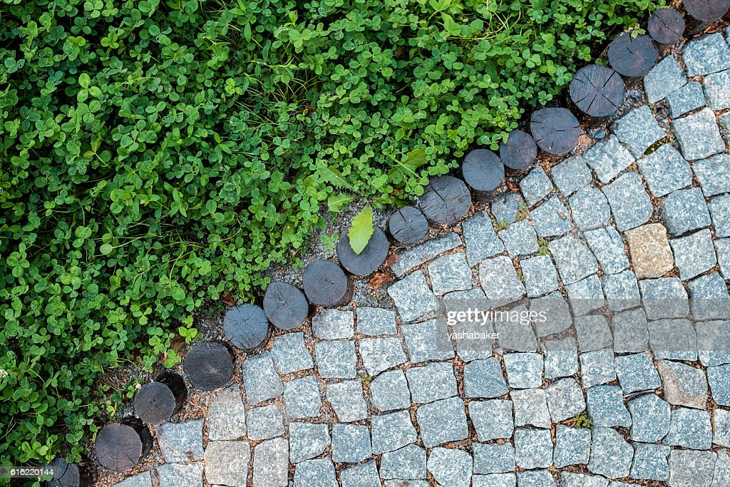 Short grass lawn and cobblestone pavement texture : Stock-Foto