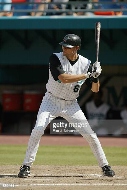 Short stop Andy Fox of the Florida Marlins at bat during the MLB game against the New York Mets at Pro Player Stadium in Miami Florida on June 2 2002...