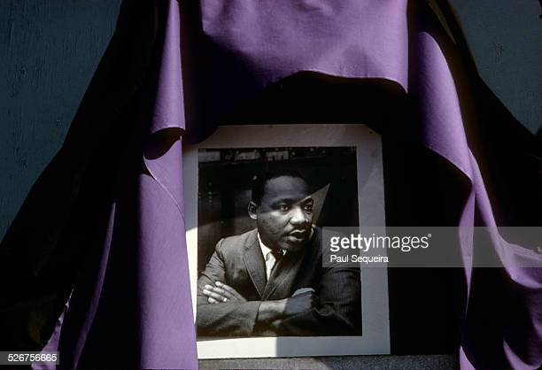 Shortly after his assassination a portrait of Reverend Martin Luther King Jr is draped in mourning with a purple cloth on the west side Chicago...