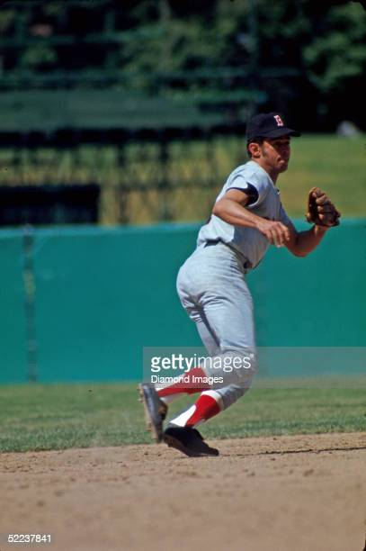 Shortstop Luis Aparicio of the Boston Red Sox moves to his left to field a ground ball during a 1971 game at Memorial Stadium in Baltimore Maryland
