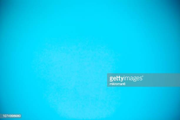 shot of blue, cyan paper background - gradient stock pictures, royalty-free photos & images