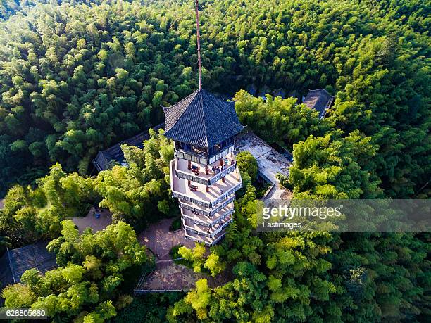AERIAL shot of pagoda in bamboo forest,Sichuan,China.