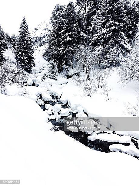 shot of snowscape - arnault stock pictures, royalty-free photos & images