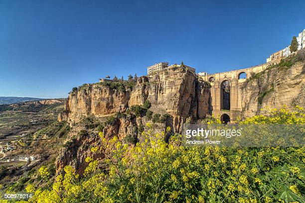 a shot of the puente nuevo bridge in ronda, malaga province, andalusia/andalucia, spain with flowers in the foreground and blue sky. - ronda stock pictures, royalty-free photos & images