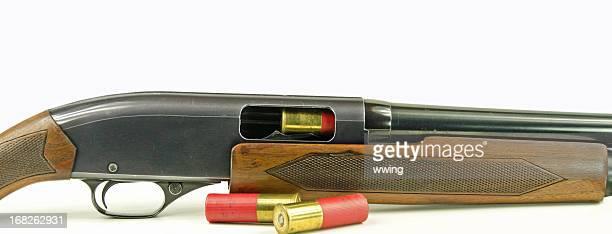 Fusil de chasse et coquillages