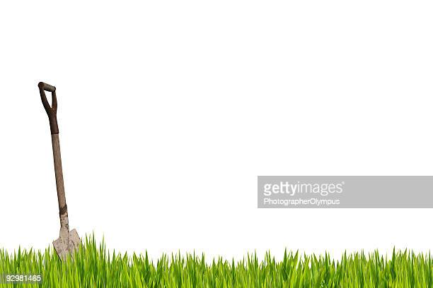 shovel in the grass - chlorophyll stock pictures, royalty-free photos & images
