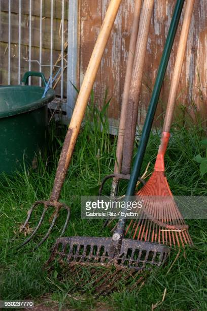 Shovels On Grass In Back Yard