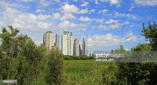 Show a view of the city from this amazing reserve. Amazing place to view wildlife and flowers. Also, a park used by the locals for walking, jogging,...