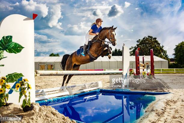 show jumping - horse with female rider jumping over hurdle - jockey stock pictures, royalty-free photos & images