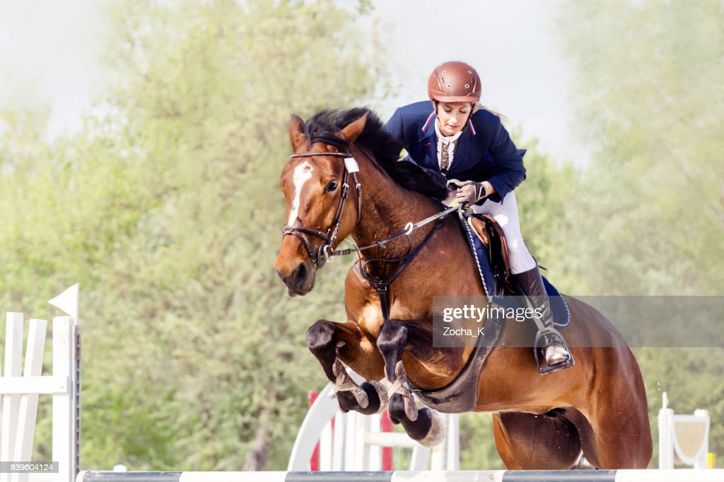 Show jumping - horse with female rider jumping over hurdle : Stock Photo