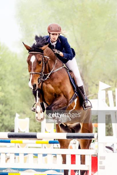 show jumping - horse with female rider jumping over hurdle - equestrian event stock pictures, royalty-free photos & images