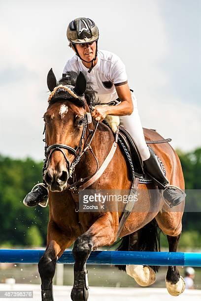Springreiten-Pferd mit Fahrer springt über die Hürde