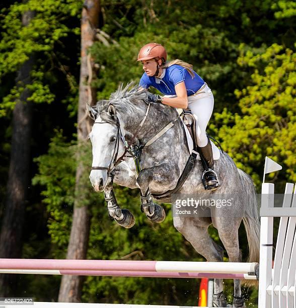 障害飛越馬とライダーのジャンプ、ハードル