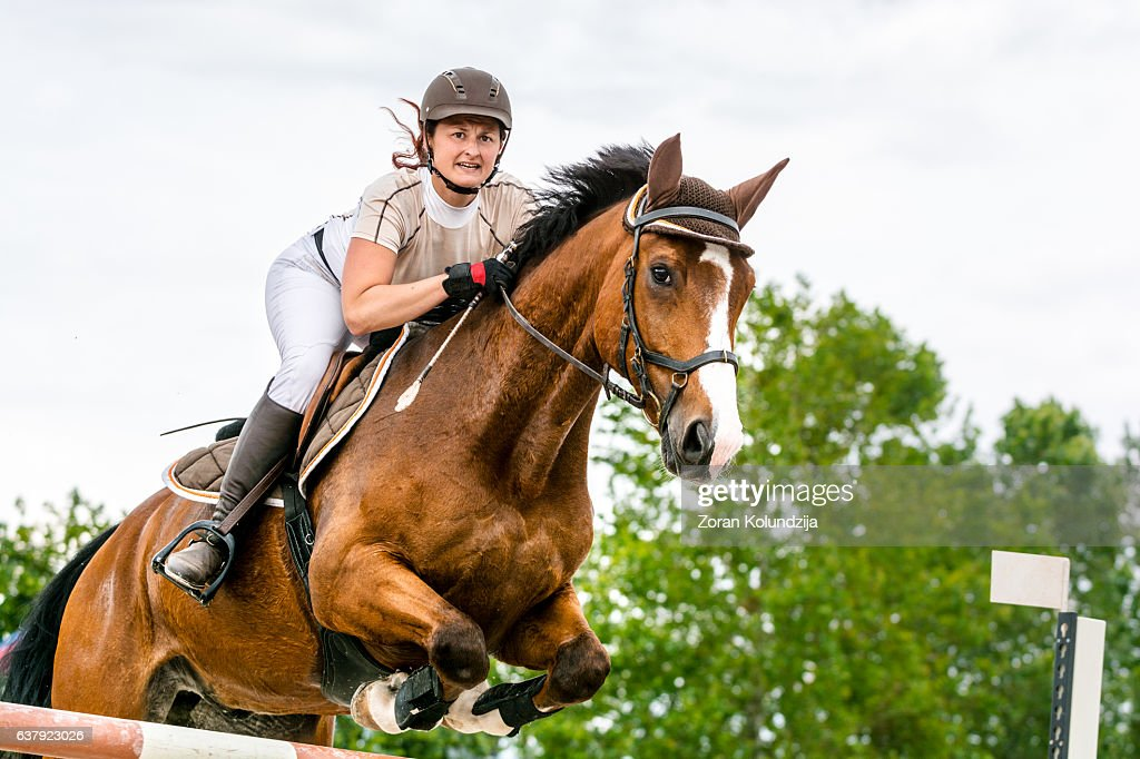 Show jumping - horse with rider jumping over hurdle : Stock Photo