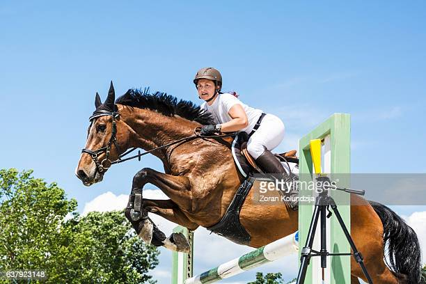 show jumping - horse with rider jumping over hurdle - hurdling horse racing stock pictures, royalty-free photos & images