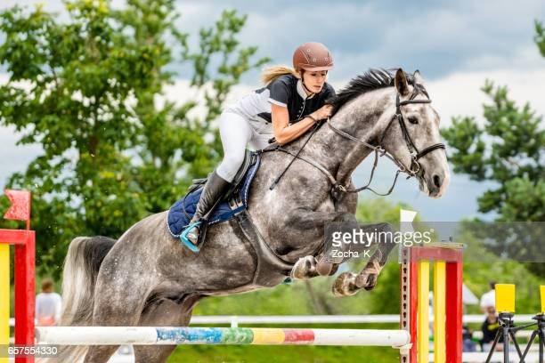 show jumping - horse with rider passing over hurdle - sports helmet stock pictures, royalty-free photos & images