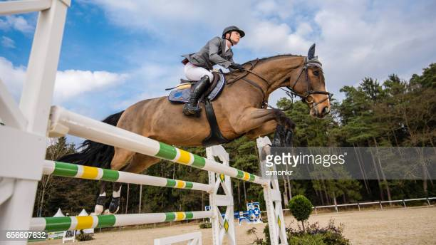show jumping - hurdling horse racing stock pictures, royalty-free photos & images