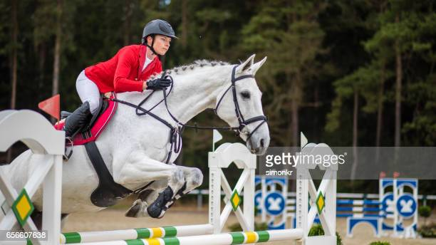 show jumping - steeplechasing horse racing stock photos and pictures
