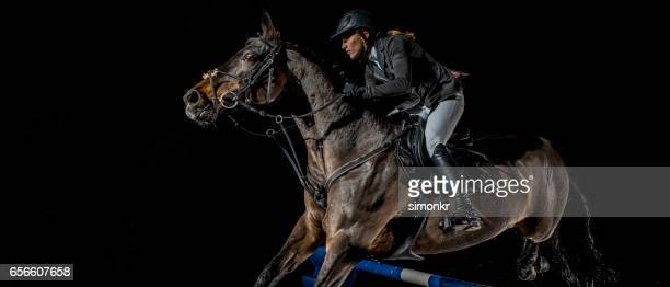 show jumping - derby day stock photos and pictures
