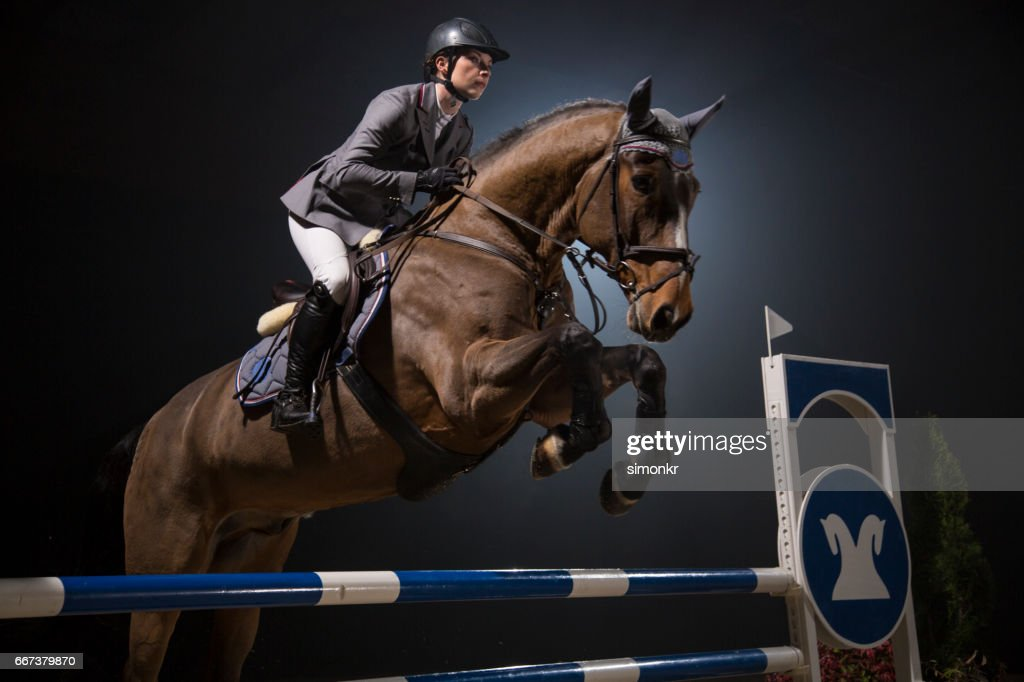Show jumping : Stock Photo
