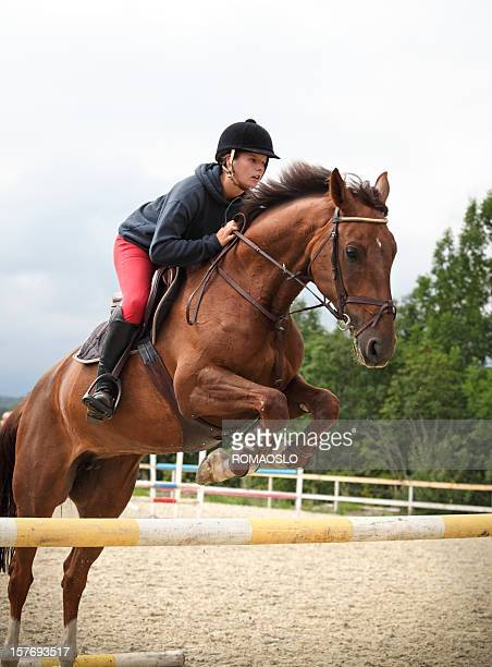 show jumping training, oslo norway - equestrian show jumping stock pictures, royalty-free photos & images
