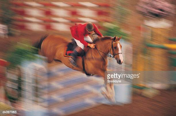 show-jumper - equestrian show jumping stock pictures, royalty-free photos & images