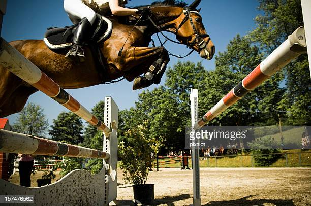 showjumping - hurdling horse racing stock pictures, royalty-free photos & images