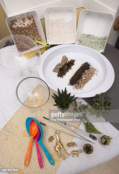 Shown are the components that Michele Weymouth uses for a doityourself terrarium with pea gravel potting soil succulents and a splash of bling in...