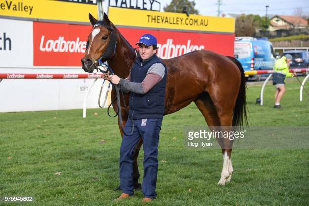 Showpero after winning the Epi Café Plate at Moonee Valley Racecourse on June 16 2018 in Moonee Ponds Australia