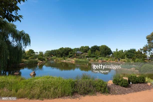 shoyoen japanese garden, japanese gardens in dubbo, australia. - dubbo australia stock pictures, royalty-free photos & images
