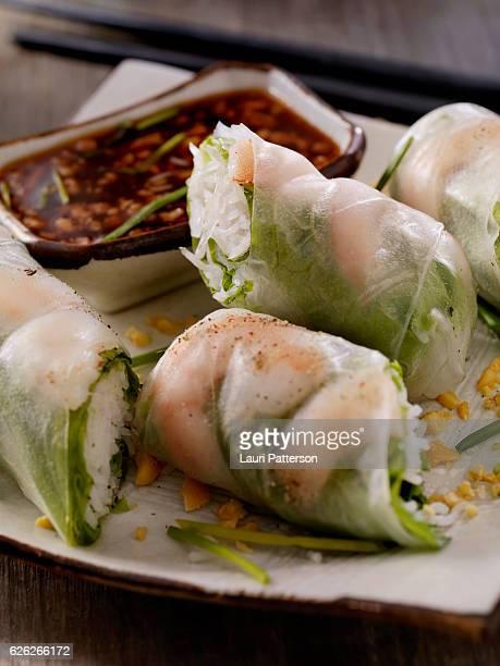 Shrimp and Rice Noodle Salad Rolls