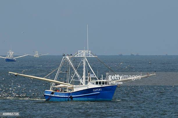 shrimp boat fleet in the gulf of mexico - gulf of mexico stock pictures, royalty-free photos & images