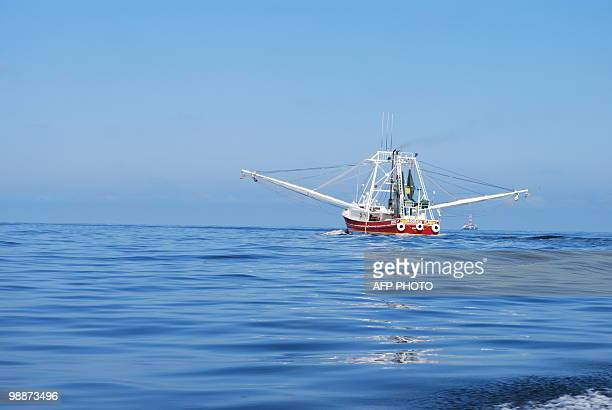 A shrimp boat heads back to the coastal Louisiana port of Venice on May 5 2010 with an offshore rig in the background after an oil slick forced the...