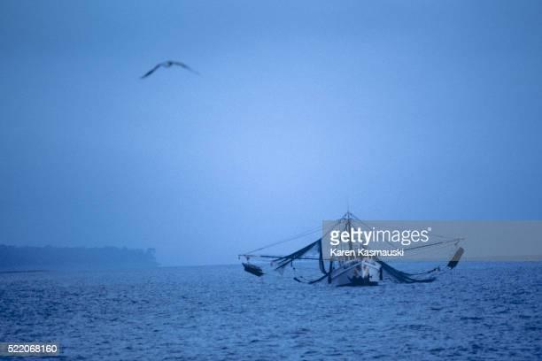 Shrimp Boat off Hilton Head