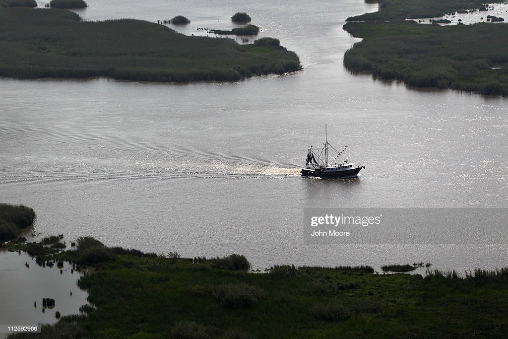A shrimp boat trolls for its catch on April 19, 2011 near Middle Ground in southern Louisiana. A year after the BP oil spill coated Gulf coast beaches and marshes, BP claims that most of the oil has been removed. Louisiana Wildlife and Fisheries says, however, that much of the coastal cleaning has been superficial, as the oil has seeped into the soil, killing marshes and further eroding the state's damaged Mississippi Delta ecosystem.